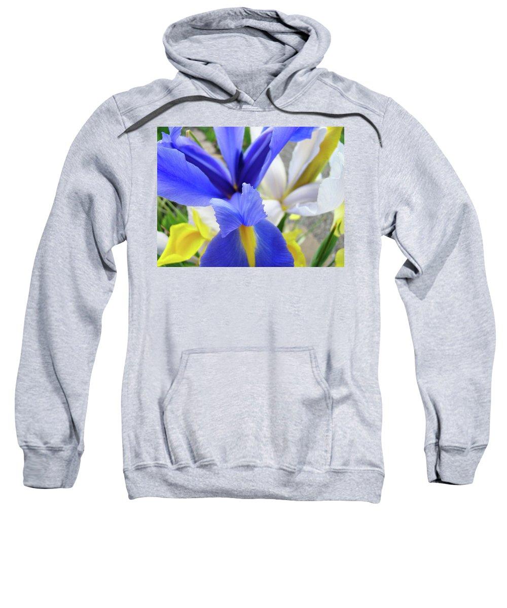 �irises Artwork� Sweatshirt featuring the photograph Irises Flowers Artwork Blue Purple Iris Flowers 1 Botanical Floral Garden Baslee Troutman by Baslee Troutman