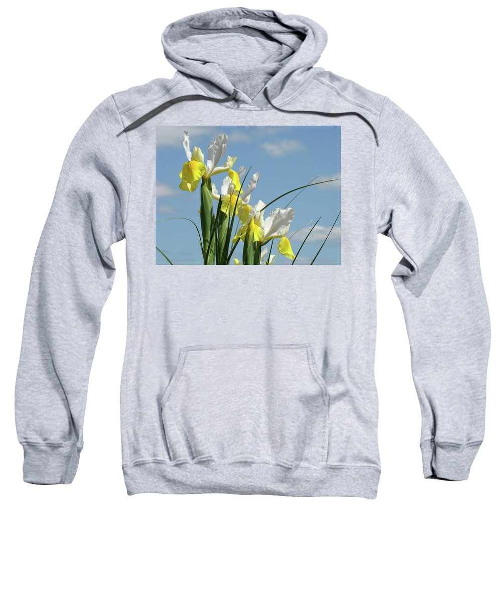 Iris Sweatshirt featuring the photograph Irises In Blue Sky Art Print Spring Iris Flowers Baslee Troutman by Baslee Troutman