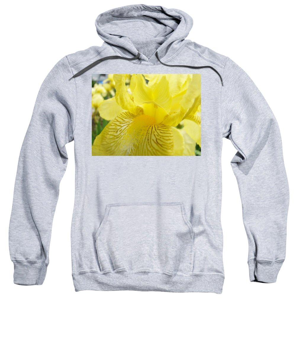 �irises Artwork� Sweatshirt featuring the photograph Irises Yellow Brown Iris Flowers Irises Art Prints Baslee Troutman by Baslee Troutman