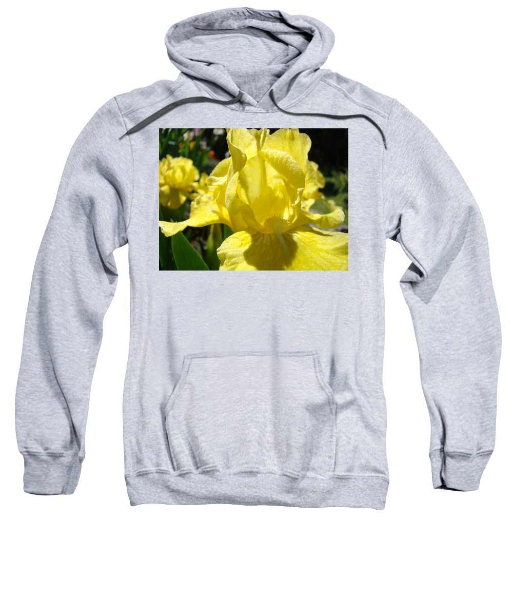 �irises Artwork� Sweatshirt featuring the photograph Irises Yellow Iris Flowers Floral Art Prints Botanical Garden Artwork Giclee by Baslee Troutman