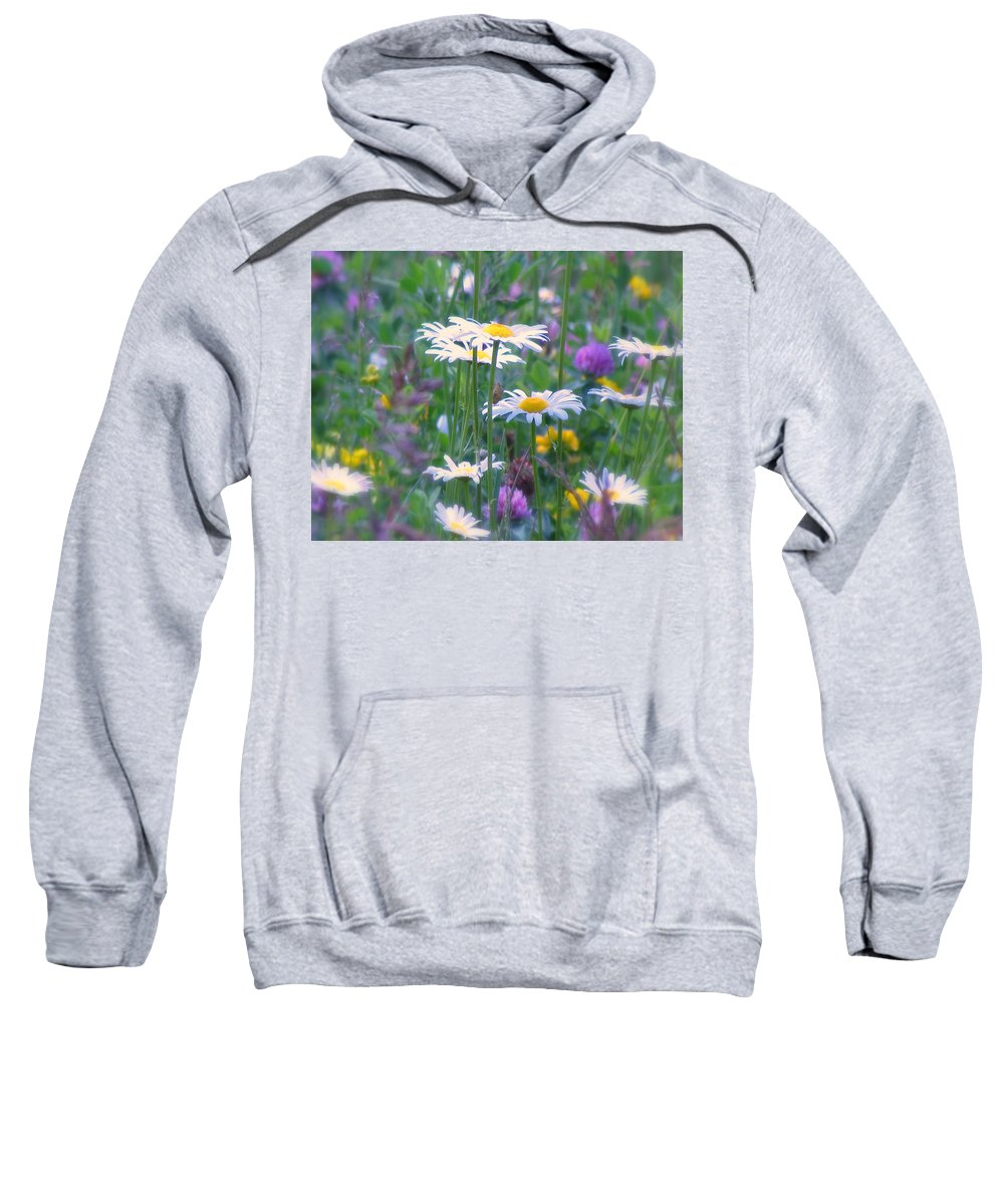 Flowers Sweatshirt featuring the photograph It's A Daisy Kind Of Day by Lori Pessin Lafargue
