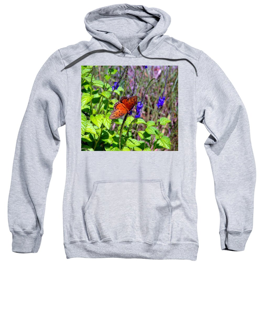 Butterfly Sweatshirt featuring the photograph Its Summer by Susanne Van Hulst