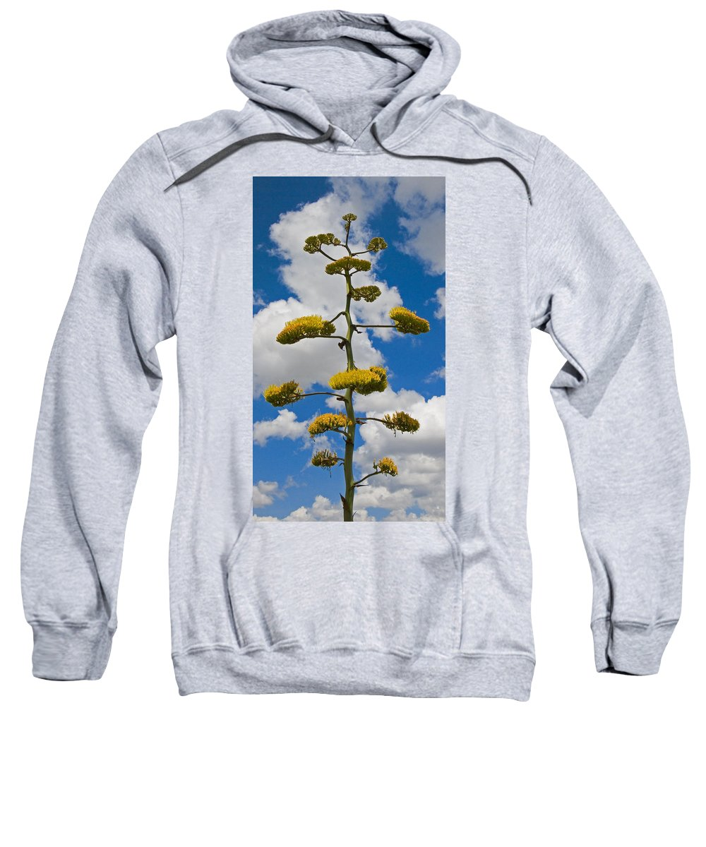 Blue Sweatshirt featuring the photograph Jacobs Ladder by Skip Hunt