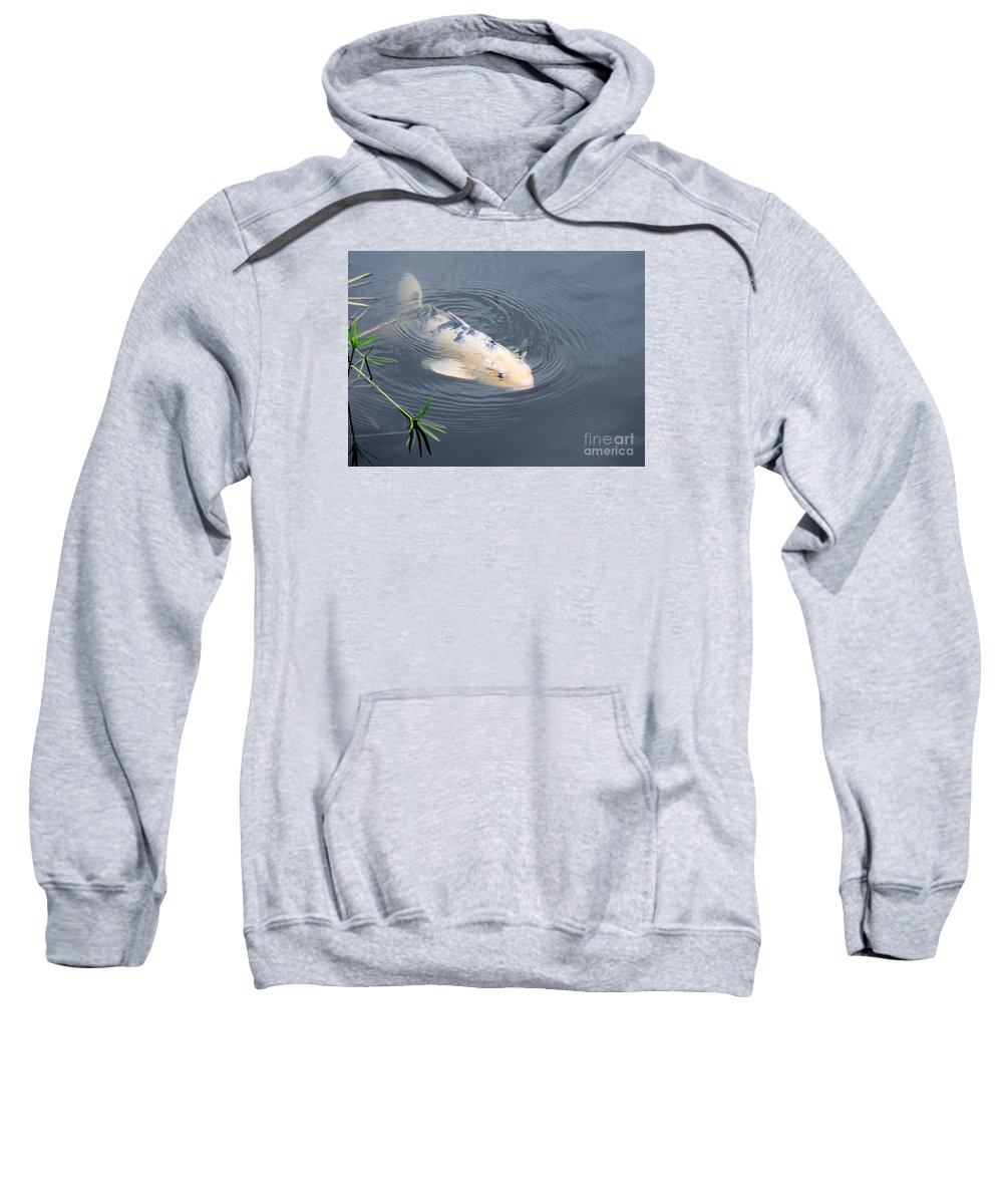 Japanese Sweatshirt featuring the photograph Japanese Koi Fish by Beth Williams