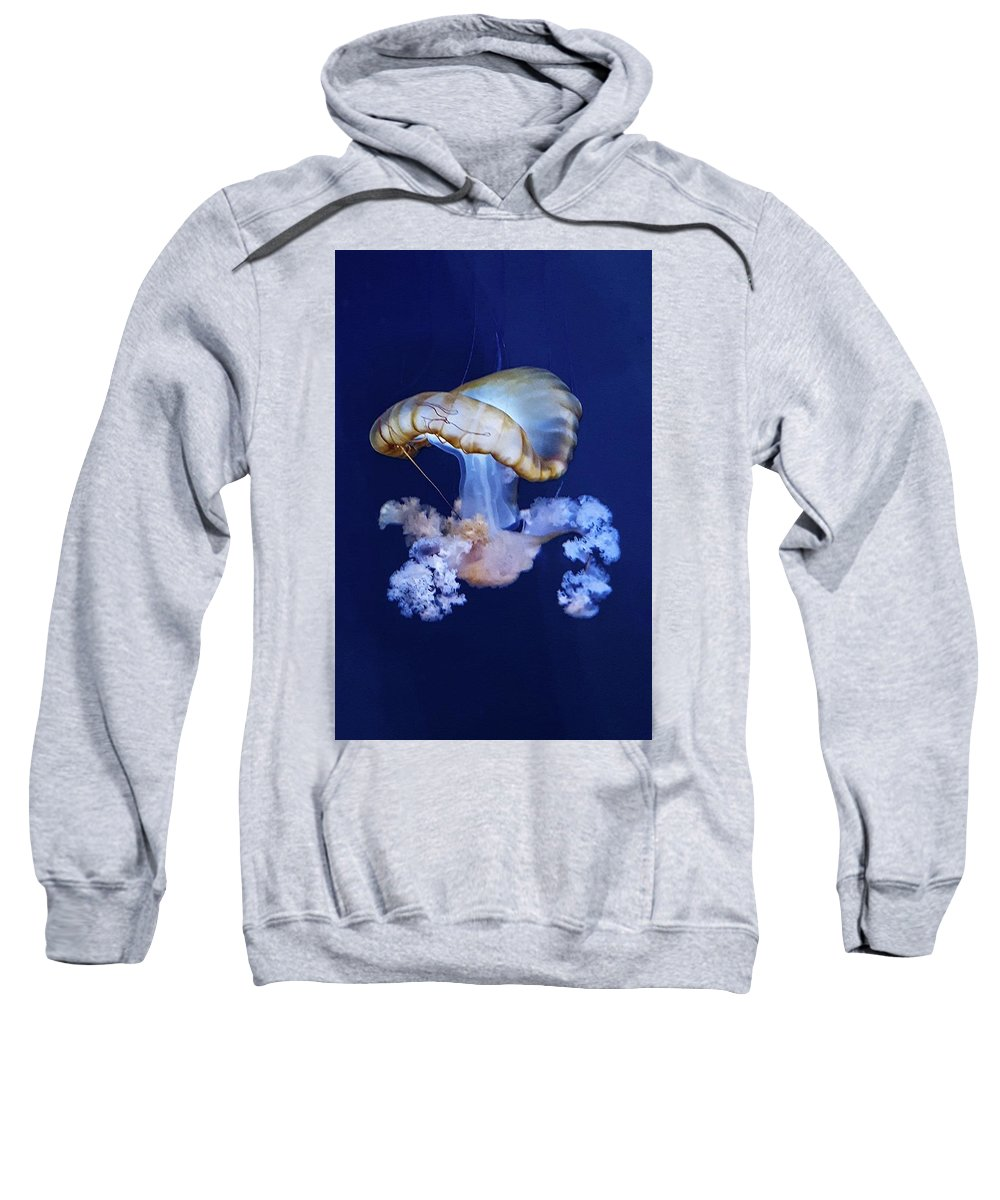 Blue Sweatshirt featuring the photograph Jellyfish by Carrie Railsback