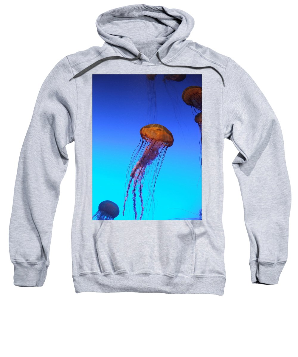 Jellyfish Sweatshirt featuring the photograph Jellyfish by Robert Meanor
