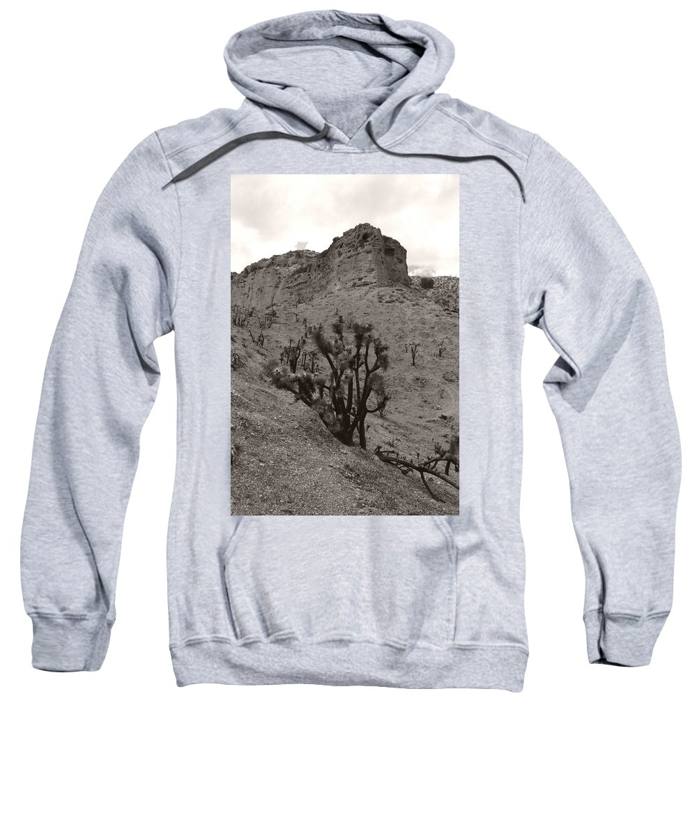 Sweatshirt featuring the photograph Joshua Hillside Number Two by Heather Kirk