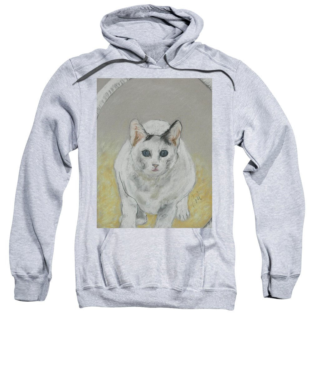 Cat Sweatshirt featuring the drawing Jumping Through Hoops by Cori Solomon