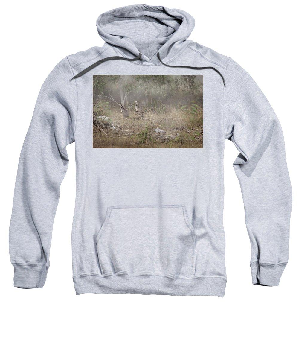 Skippy Hooded Sweatshirts T-Shirts
