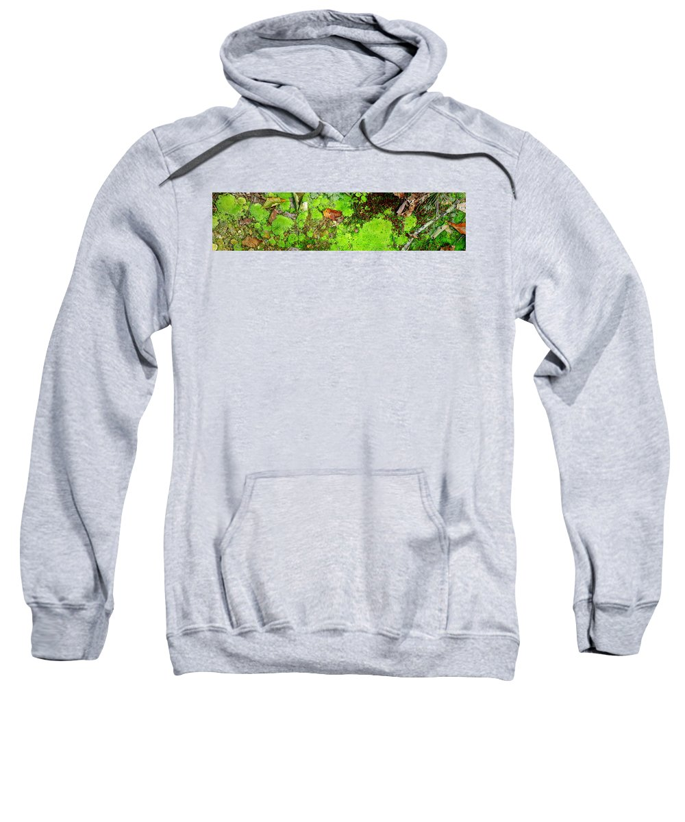 Moss Sweatshirt featuring the photograph Kate Moss by Ed Smith