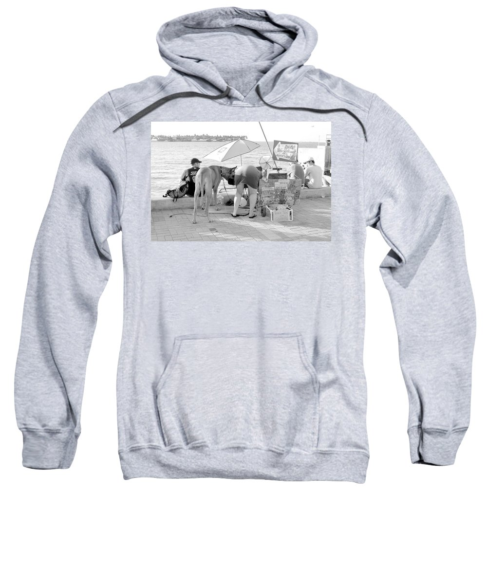 Great Sweatshirt featuring the photograph Key West Dane by Amy Nichter