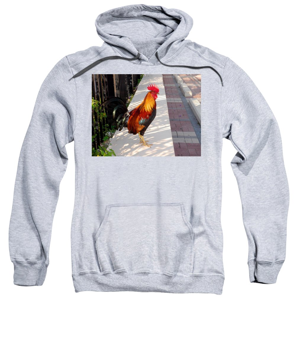 Photography Sweatshirt featuring the photograph Key West Rooster by Susanne Van Hulst