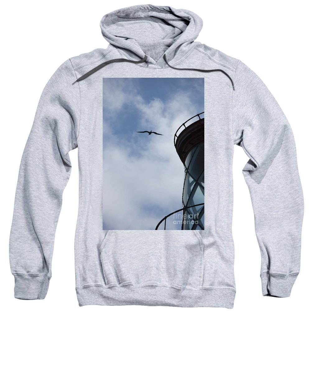 Kilauea Sweatshirt featuring the photograph Kilauea Lighthouse And Bird by Nadine Rippelmeyer
