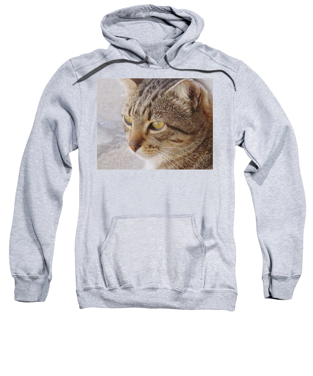 Cat Sweatshirt featuring the photograph King Cat by Ian MacDonald
