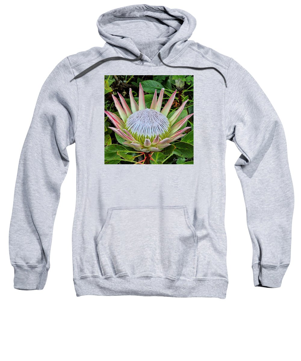 2015 Sweatshirt featuring the photograph King Protea by Leon Roland