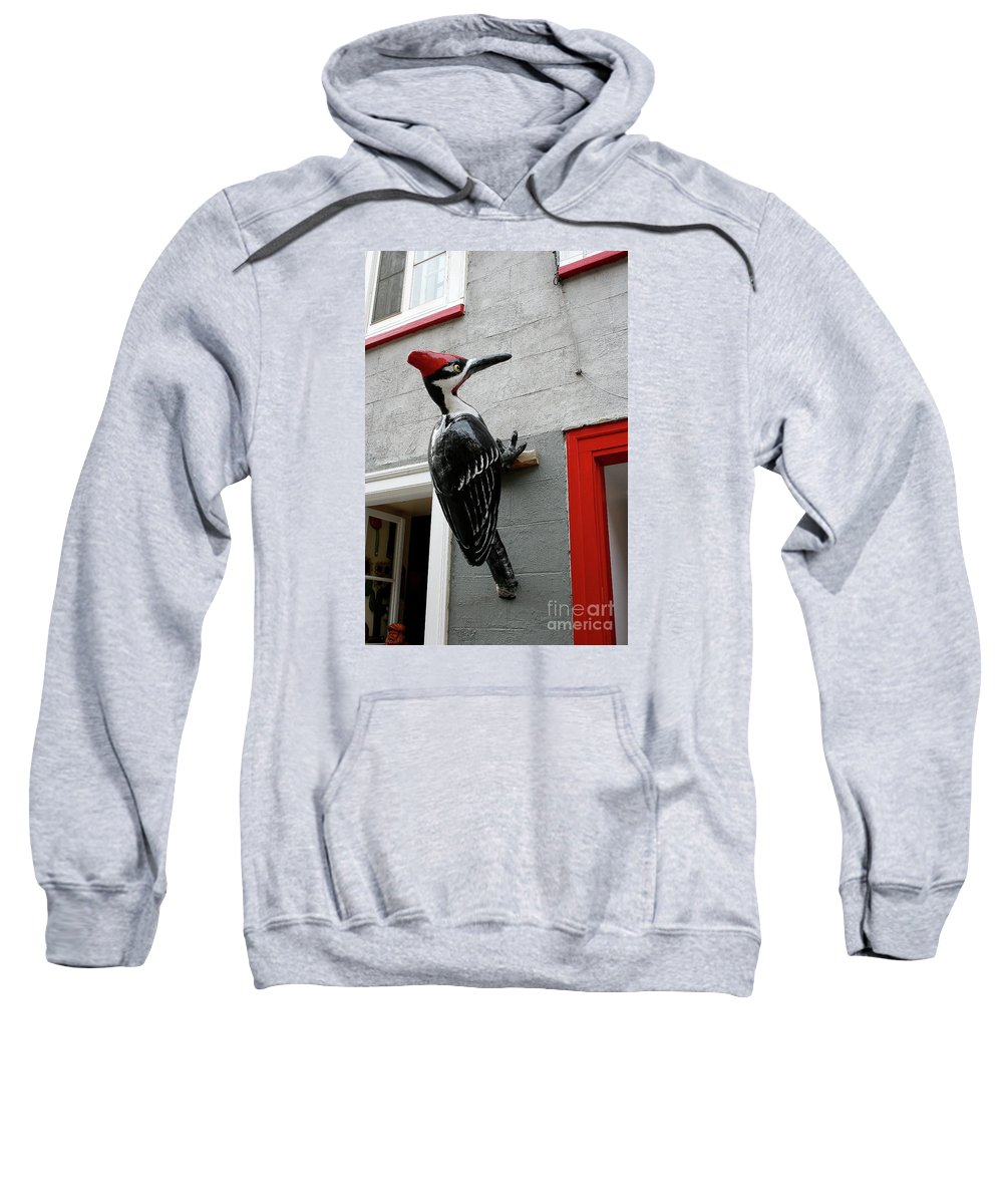 Woodpecker Sweatshirt featuring the photograph Knock On The Wall by Christiane Schulze Art And Photography