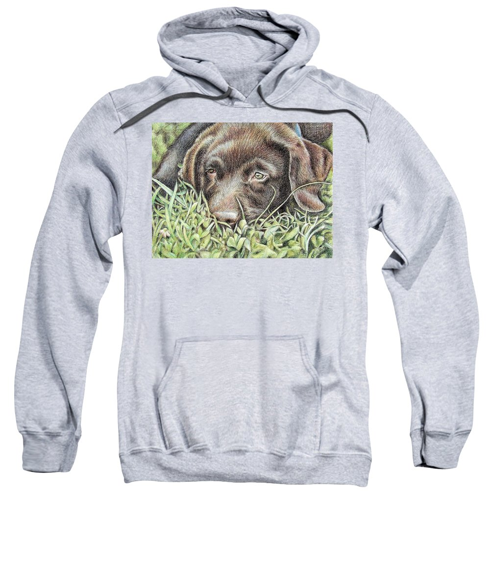 Dog Sweatshirt featuring the pastel Labrador Puppy by Nicole Zeug