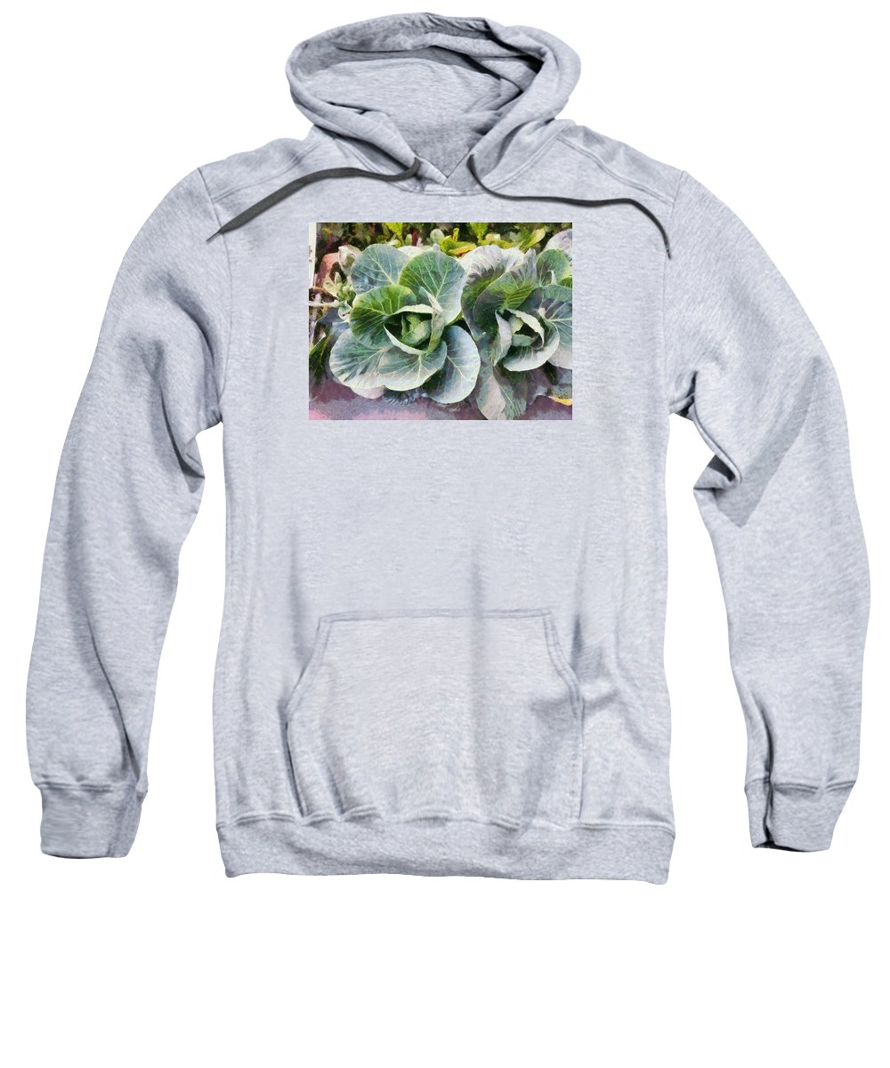 Cabbage Plant Sweatshirt featuring the photograph Large Leaves Of A Cabbage Plant by Ashish Agarwal