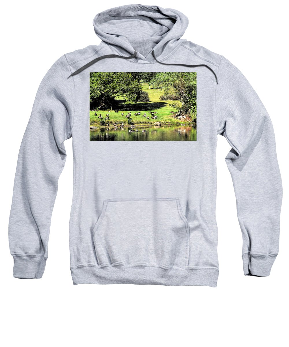 Bird Sweatshirt featuring the photograph Last Days Of Summer by Gaby Swanson