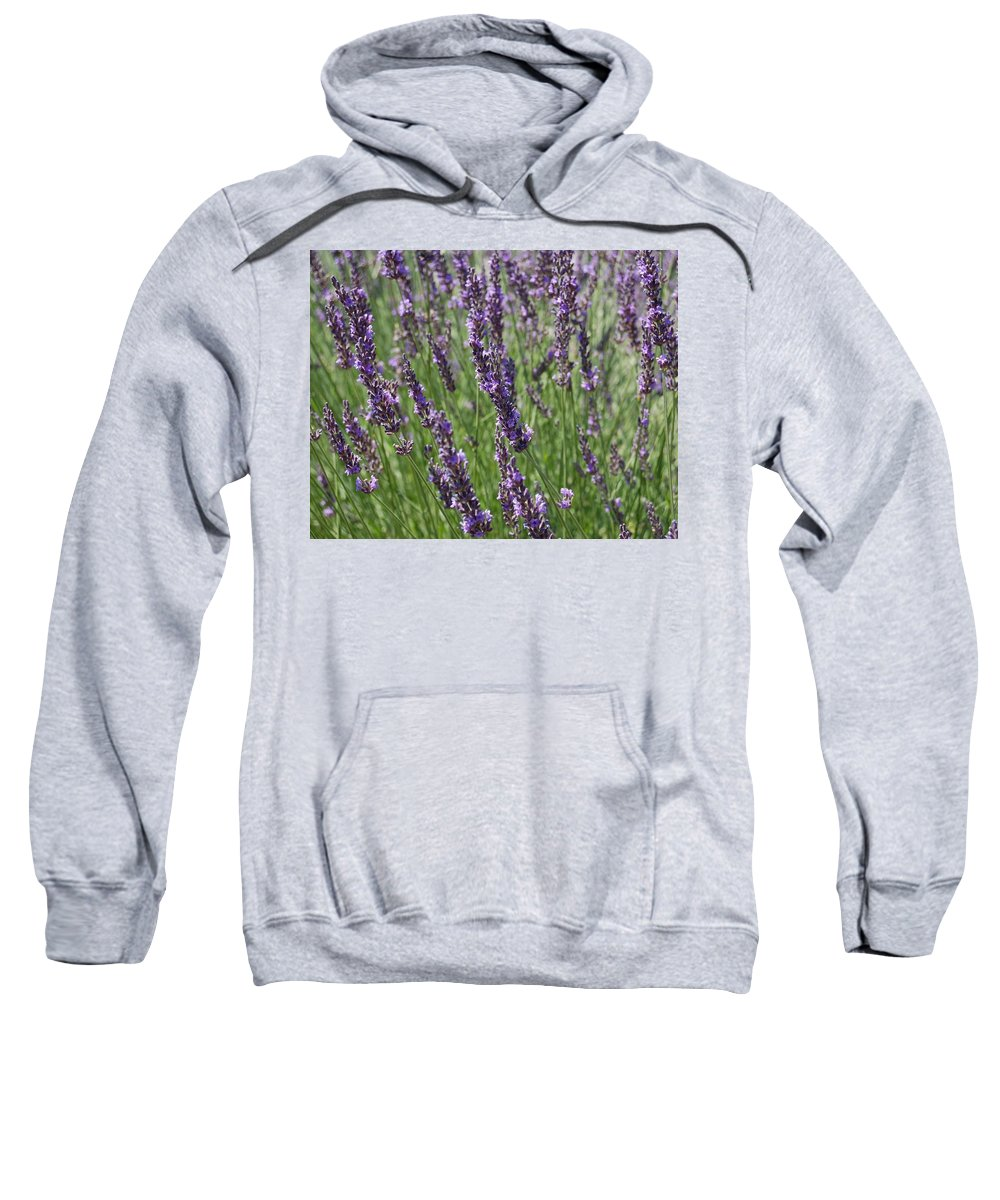 Lavender Sweatshirt featuring the photograph Lavendar by Sheryl R Smith