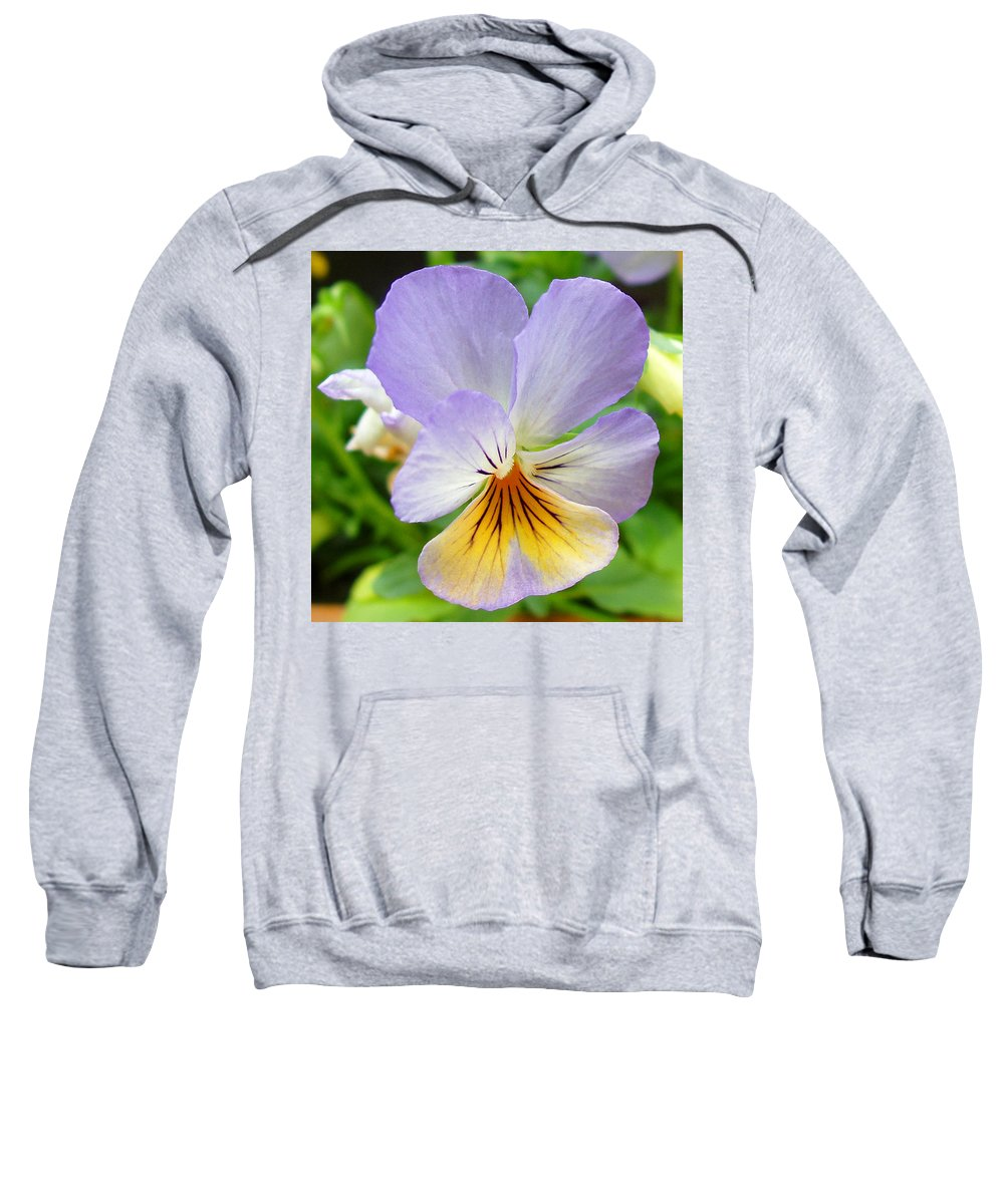 Pansy Sweatshirt featuring the photograph Lavender Pansy by Nancy Mueller