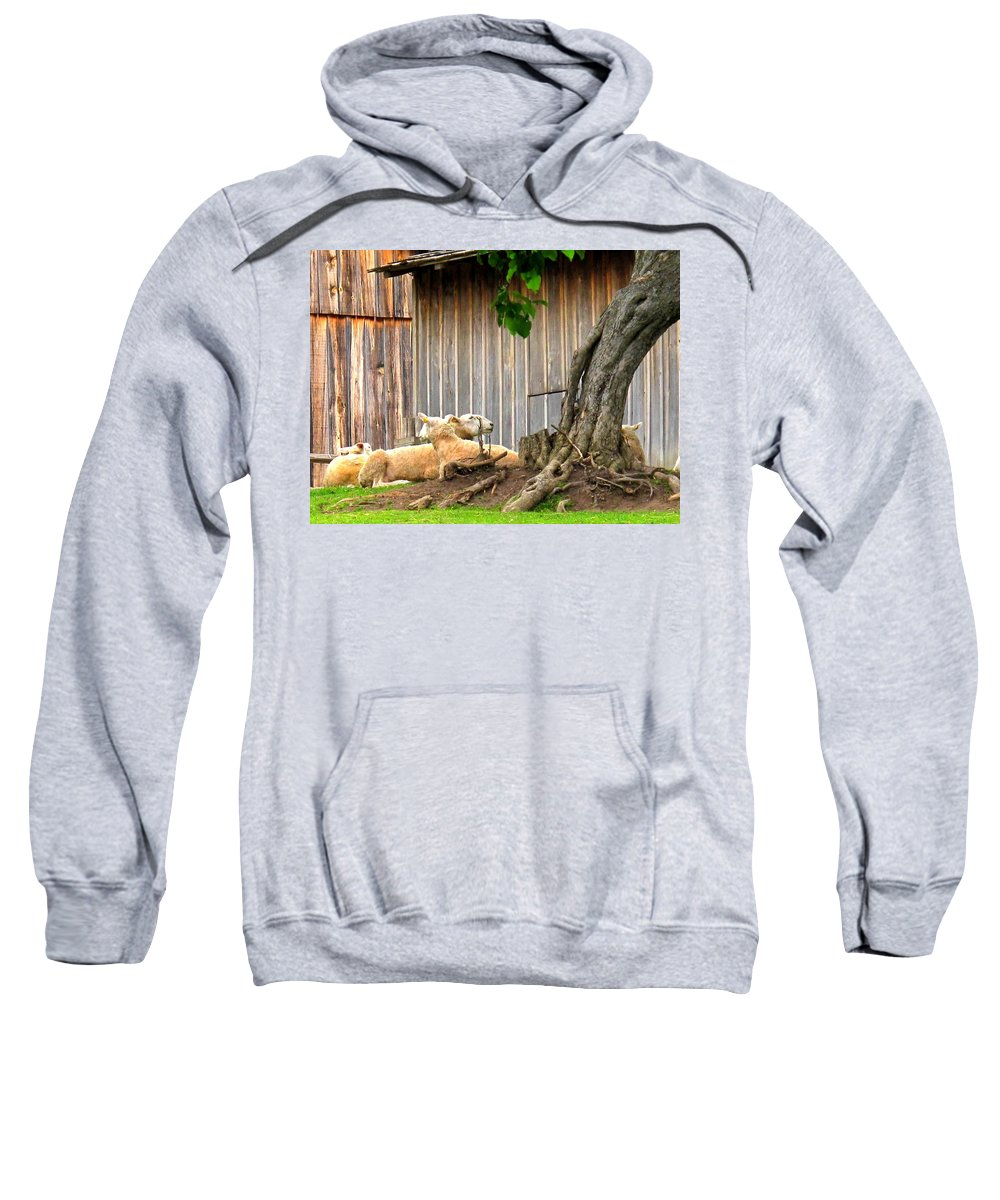 Sheep Sweatshirt featuring the photograph Lawnmowers At Rest by Ian MacDonald
