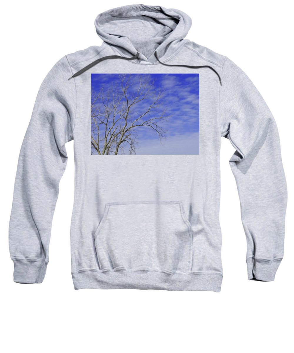 Branches Sweatshirt featuring the photograph Leafless by Ann Horn