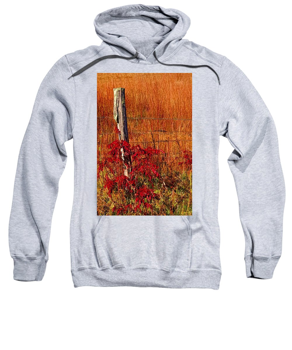 Hh Photography Of Florida Sweatshirt featuring the photograph Lean On Me by HH Photography of Florida