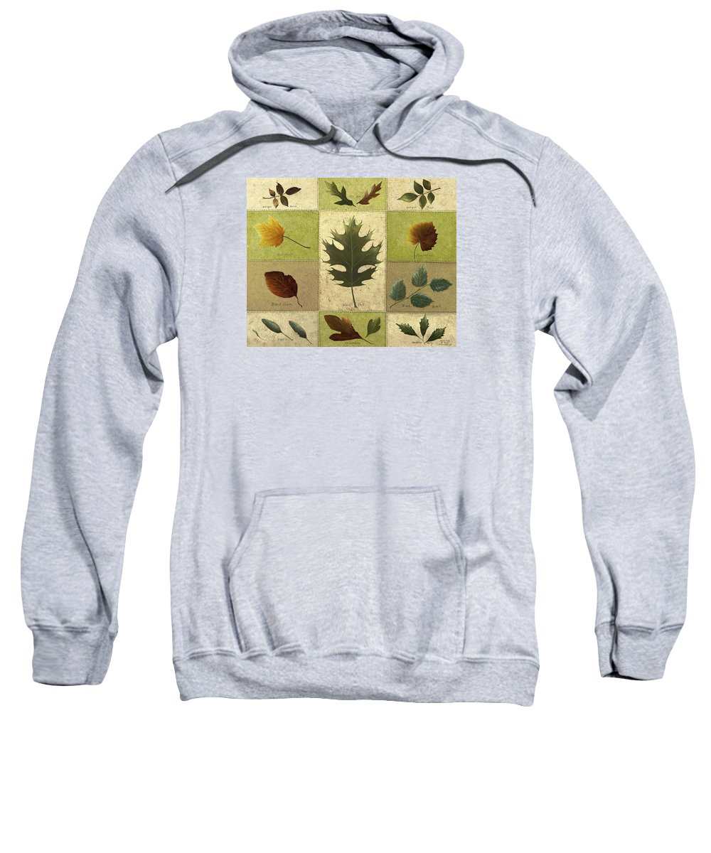 Still Life Paintings Sweatshirt featuring the painting Leaves by Mary Ann King