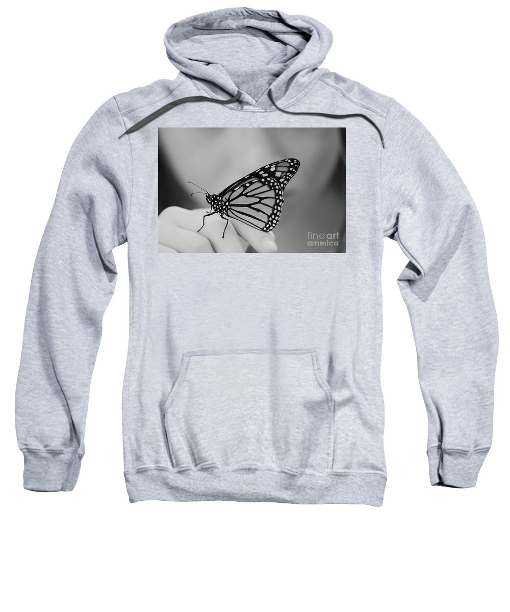 Butterfly Sweatshirt featuring the photograph Let It Go by Aimelle