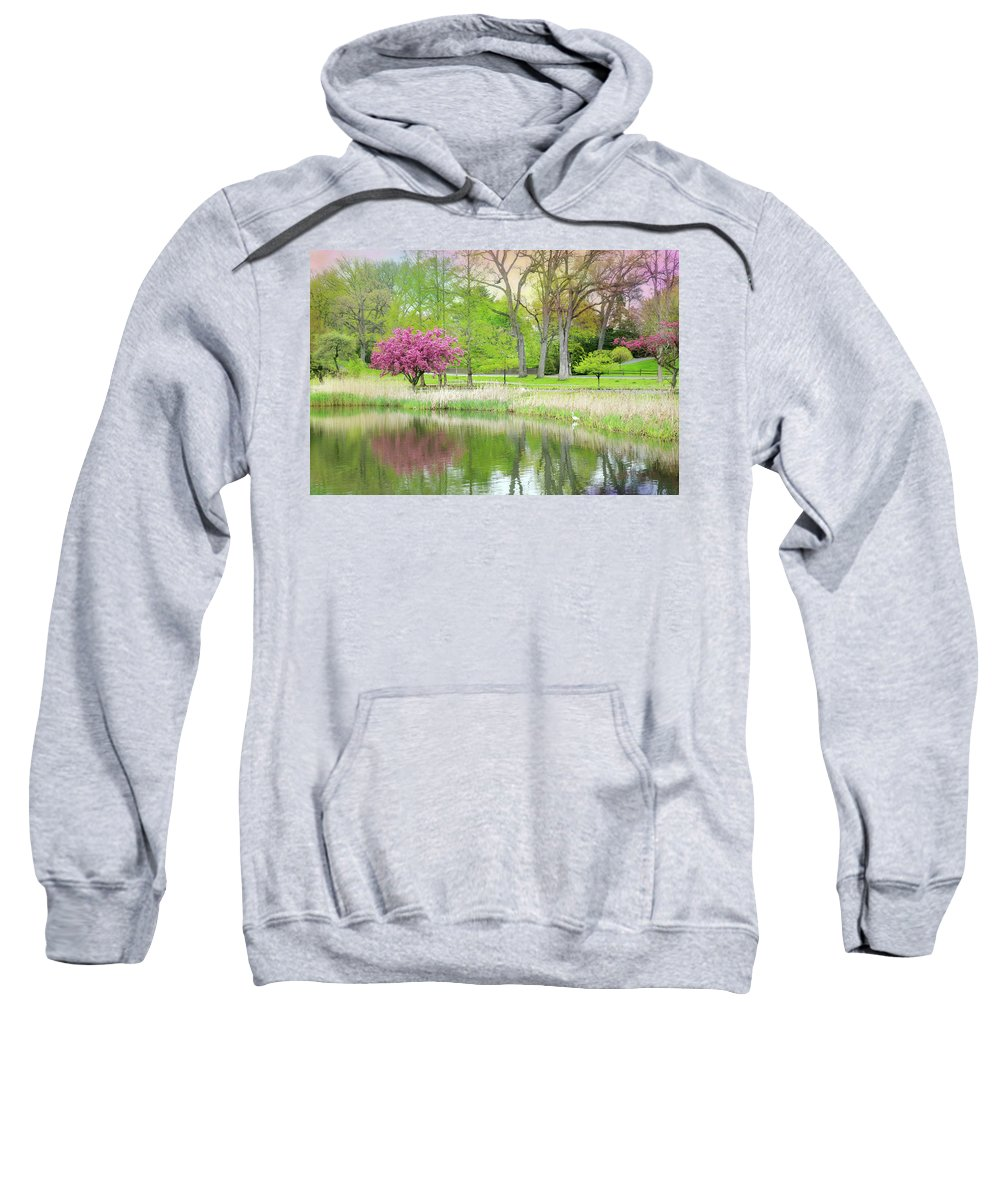 Spring Sweatshirt featuring the photograph Let The Record Play by Diana Angstadt