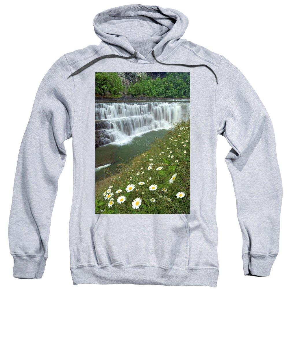 Letchworth Falls State Park Sweatshirt featuring the photograph Letchworth Falls Sp Lower Falls Daisies by Dean Hueber