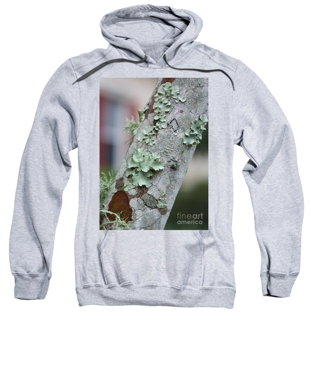 Nature Sweatshirt featuring the photograph Lichens 2 by Carol Groenen