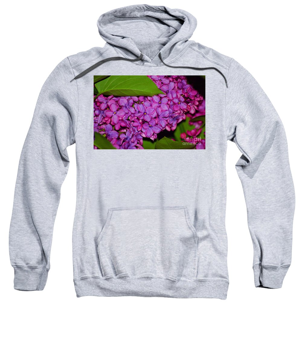 Lilac Sweatshirt featuring the photograph Lilac In The Dark by Elizabeth Stone