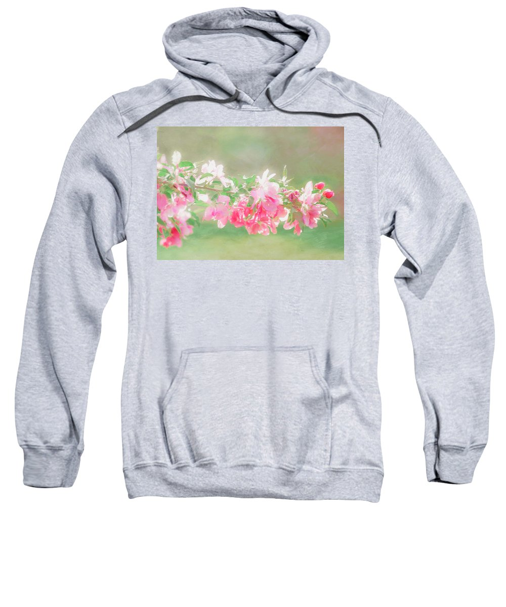 Spring Sweatshirt featuring the photograph Lilacs In Sunshine by Hal Halli