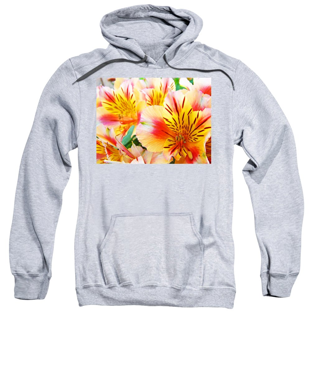 Lilies Sweatshirt featuring the photograph Lilies Art Prints Pink Yellow Lily Flowers 1 Giclee Prints Baslee Troutman by Baslee Troutman