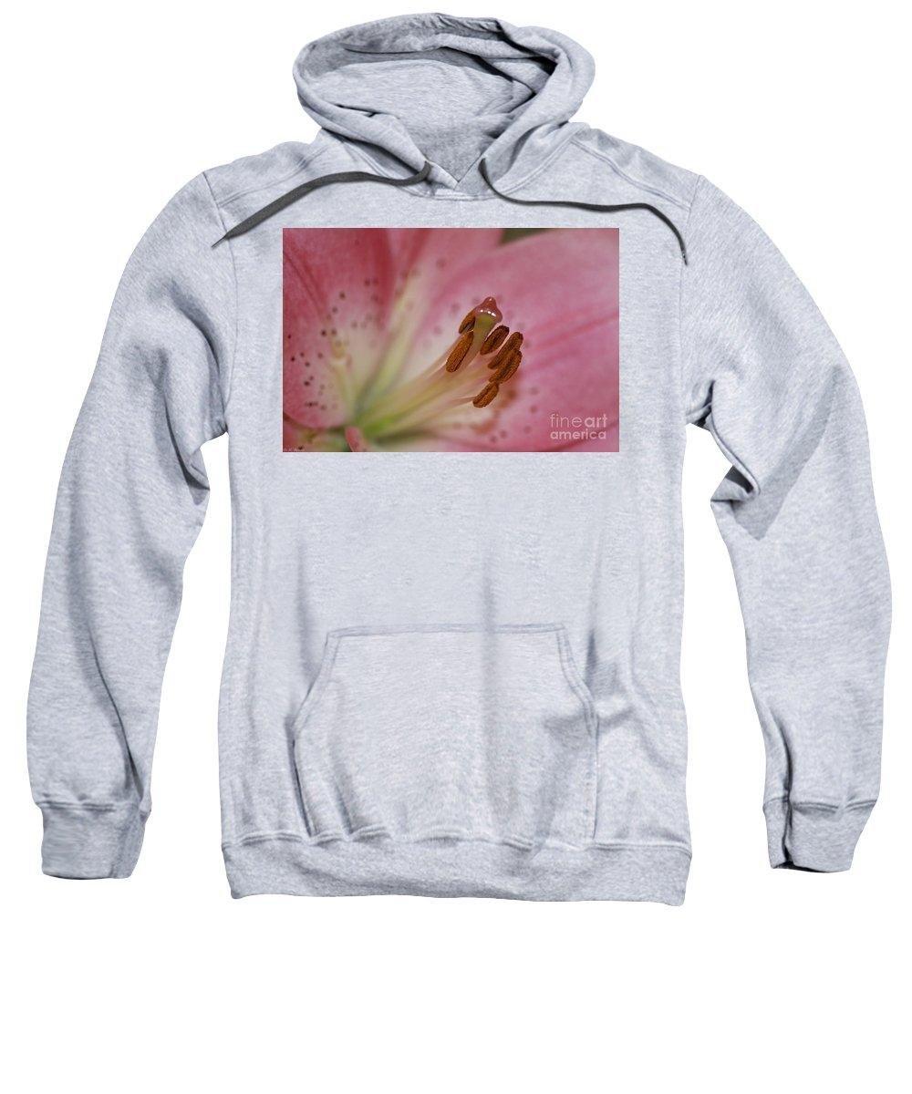 Pink Sweatshirt featuring the photograph Lilly Pink Lilly by Deborah Benoit