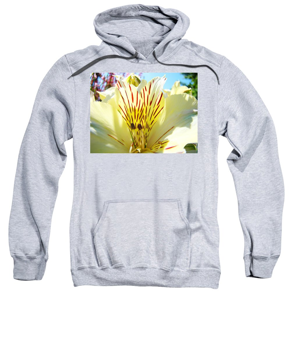 Lilies Sweatshirt featuring the photograph Lily Flowers Art Prints Yellow Lillies 2 Giclee Prints Baslee Troutman by Baslee Troutman