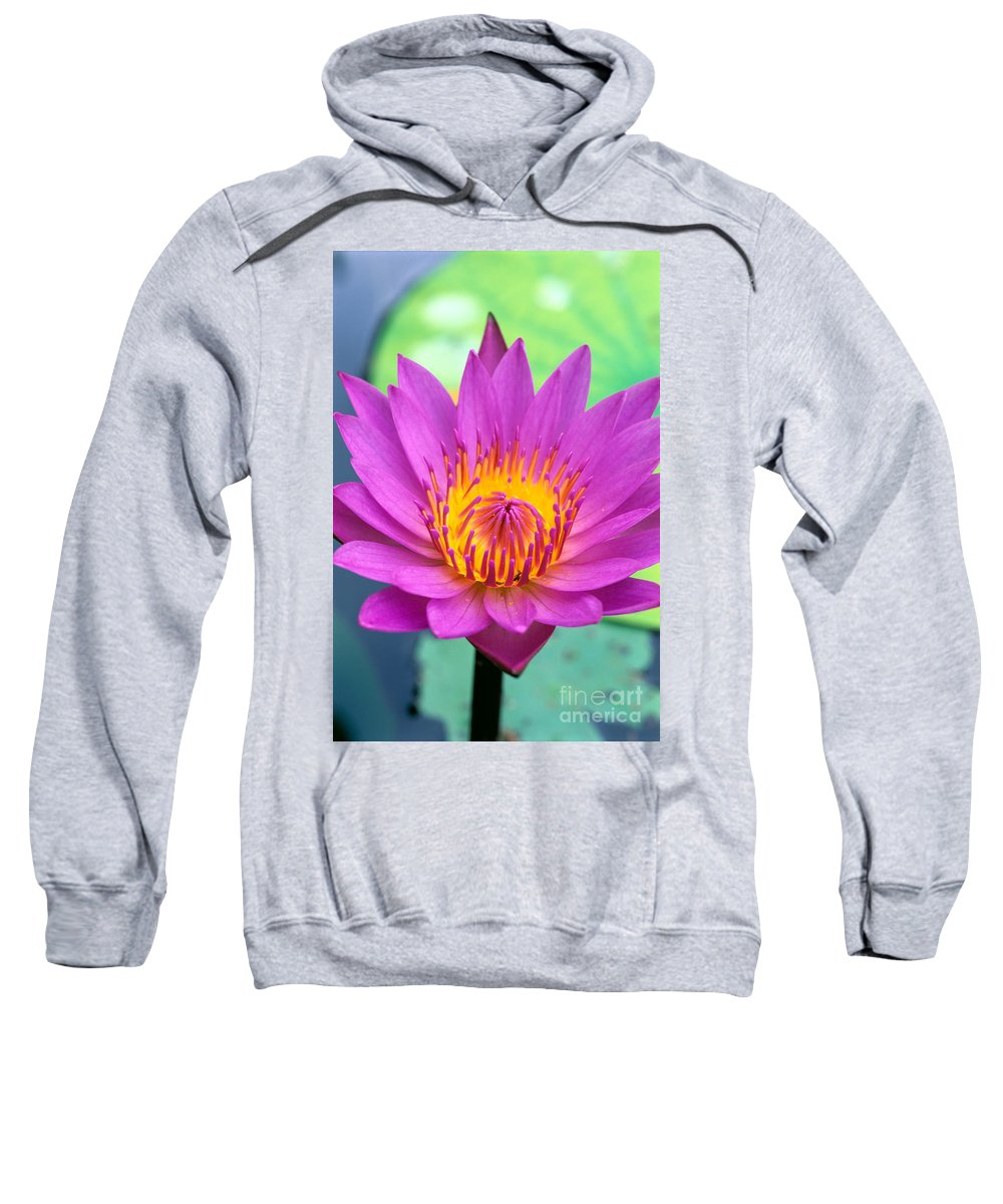 Bill Brennan Sweatshirt featuring the photograph Lily Pad by Bill Brennan - Printscapes
