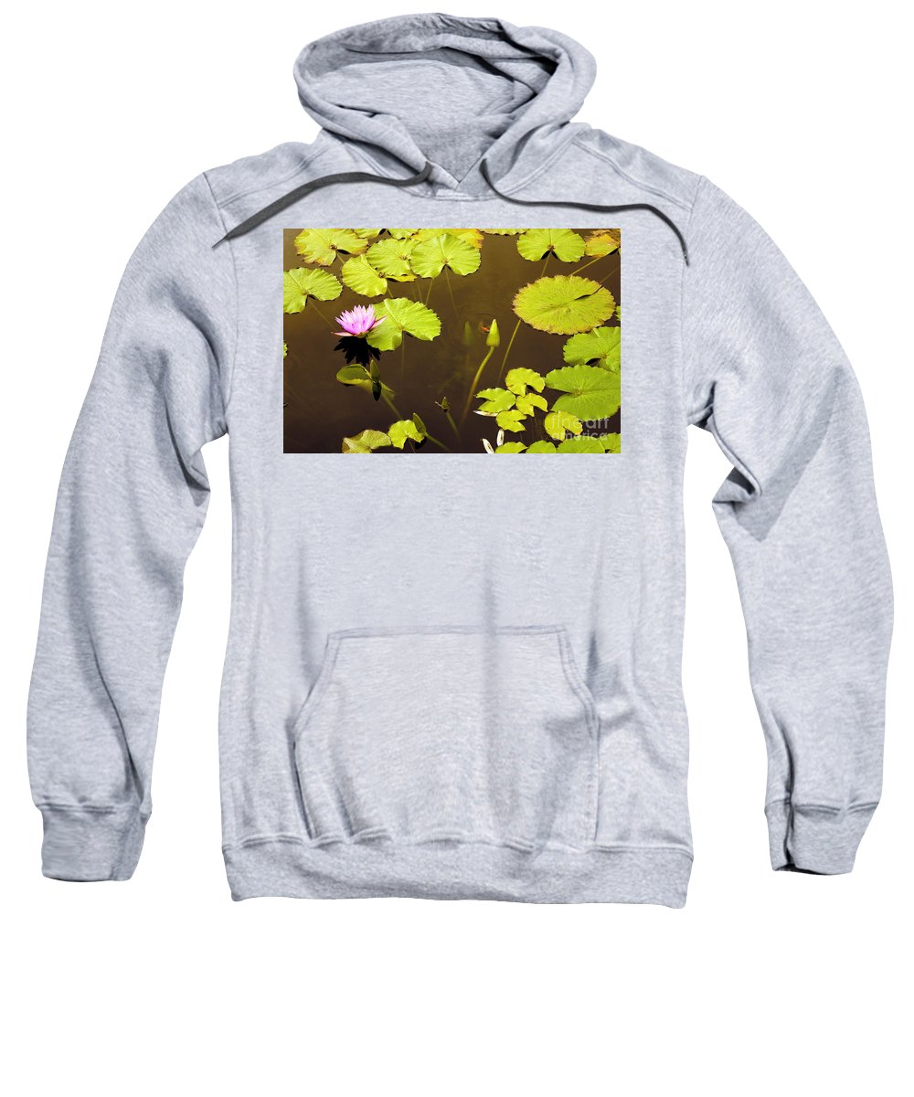 Lily Pad Sweatshirt featuring the photograph Lily Pads 1 by Madeline Ellis