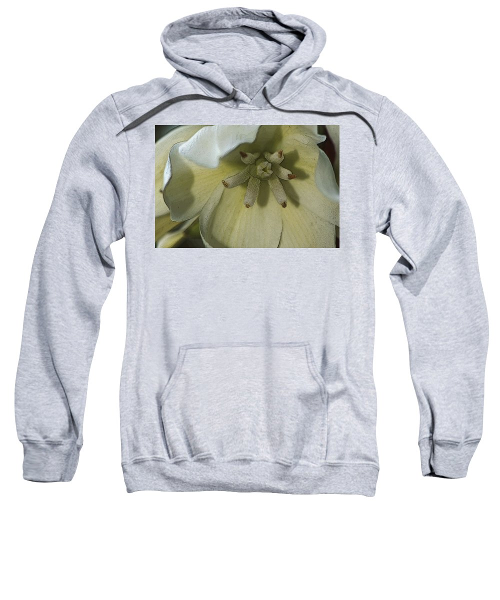 Lily Sweatshirt featuring the photograph Lily Poster by Jayne Gohr