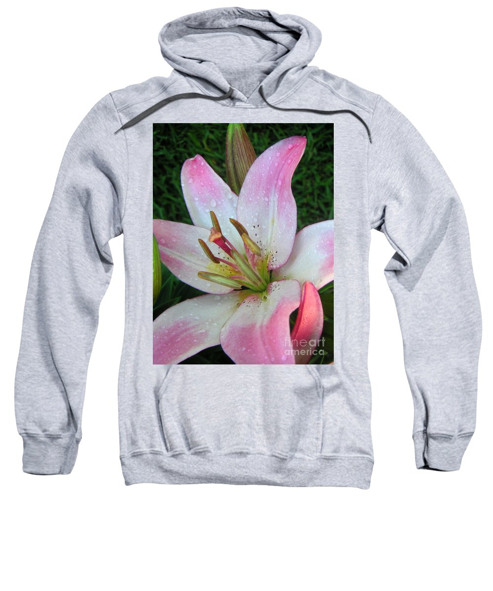 Nature Sweatshirt featuring the photograph Lily Singled Out by Lucyna A M Green