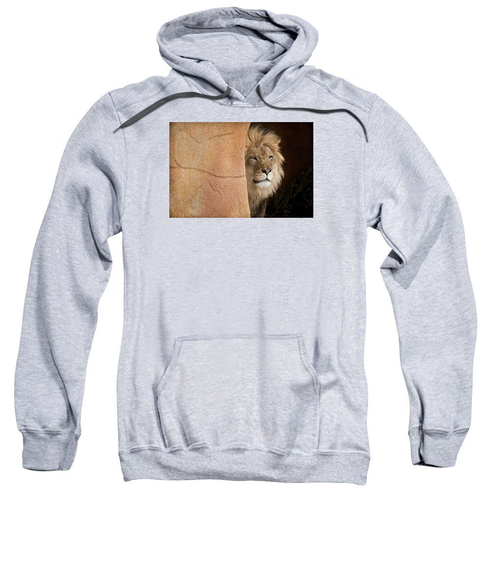Lion Sweatshirt featuring the photograph Lion Emerging  Captive by Steve Gadomski