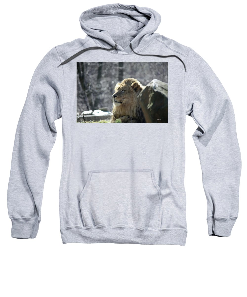 Maryland Sweatshirt featuring the photograph Lion King by Ronald Reid