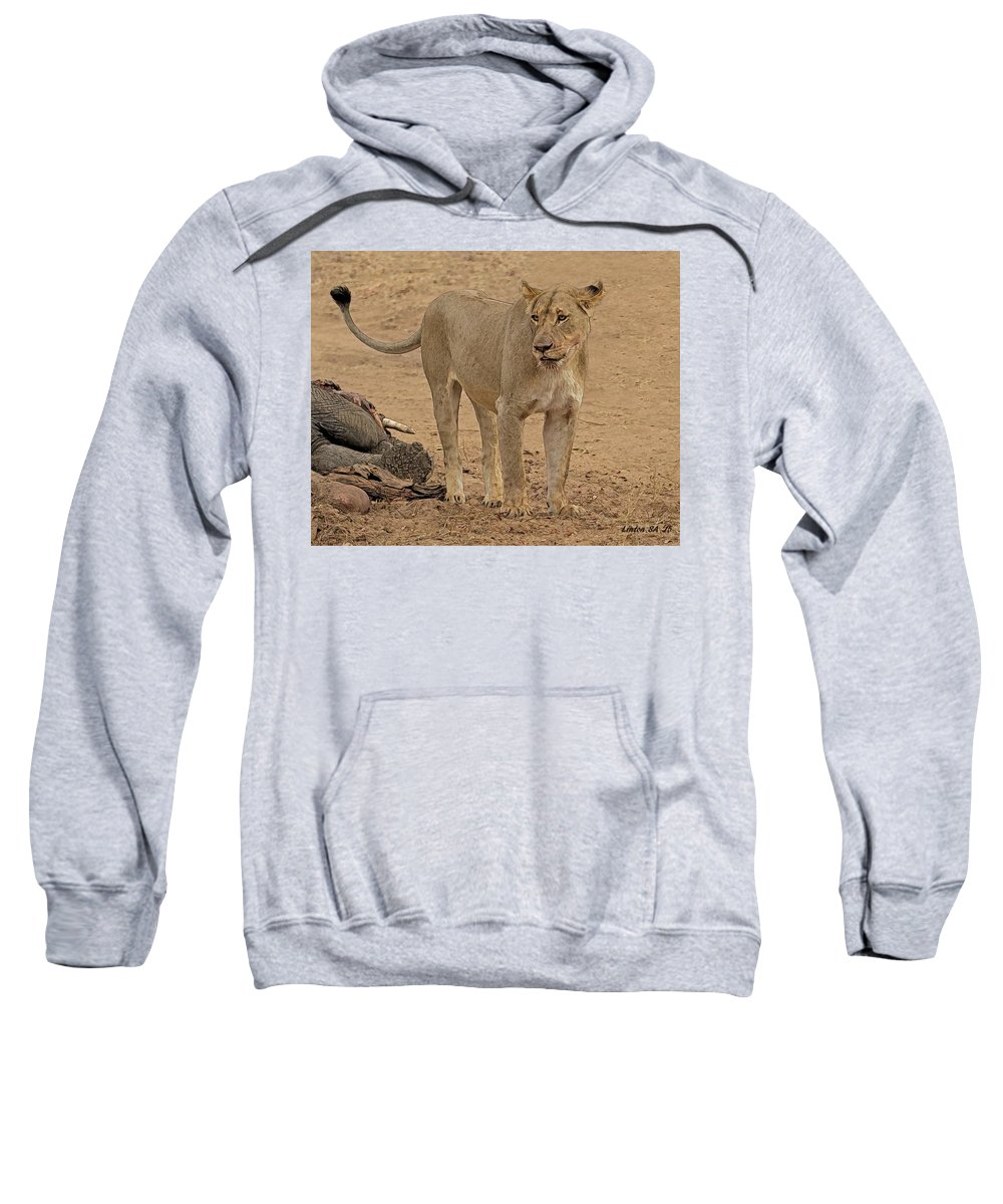 African Lioness Sweatshirt featuring the digital art Lioness At The Kill by Larry Linton