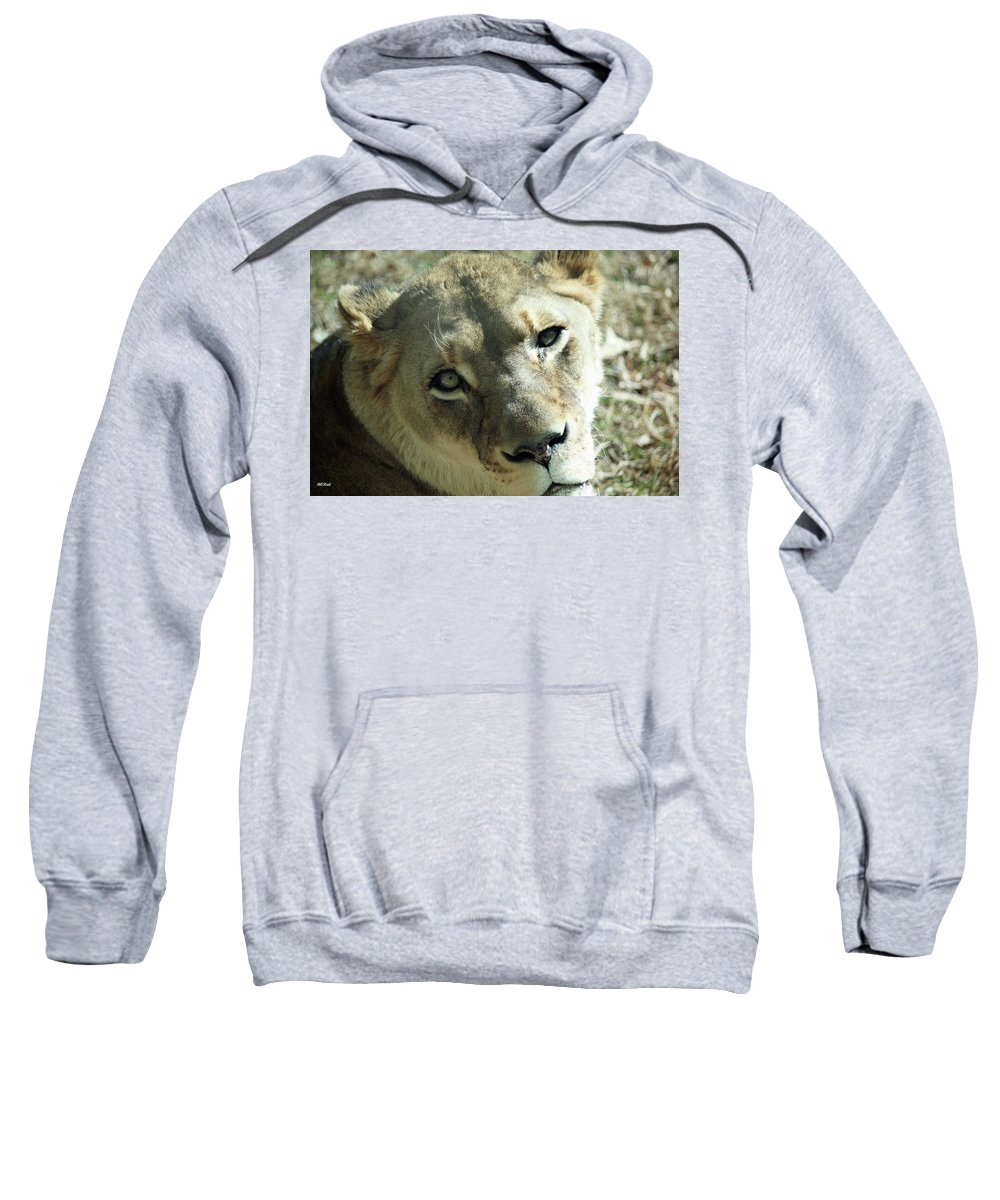 Maryland Sweatshirt featuring the photograph Lioness Up Close by Ronald Reid