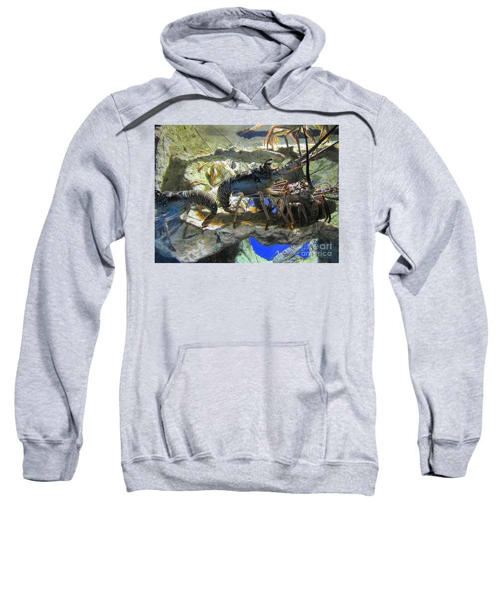Lobster Sweatshirt featuring the photograph Lobster by Michelle Powell