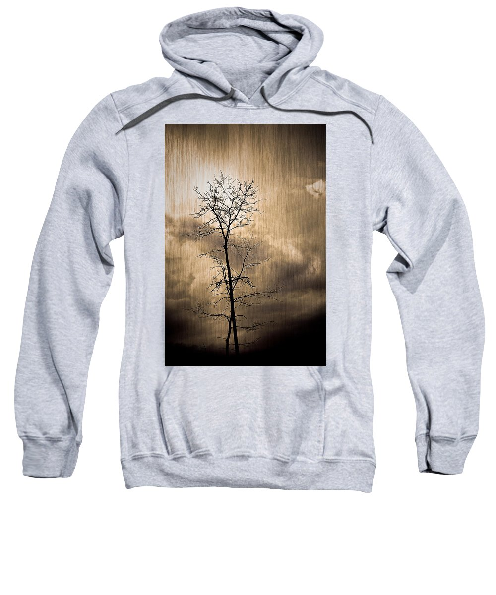 Charuhas Sweatshirt featuring the photograph Lone Survivor by Charuhas Images
