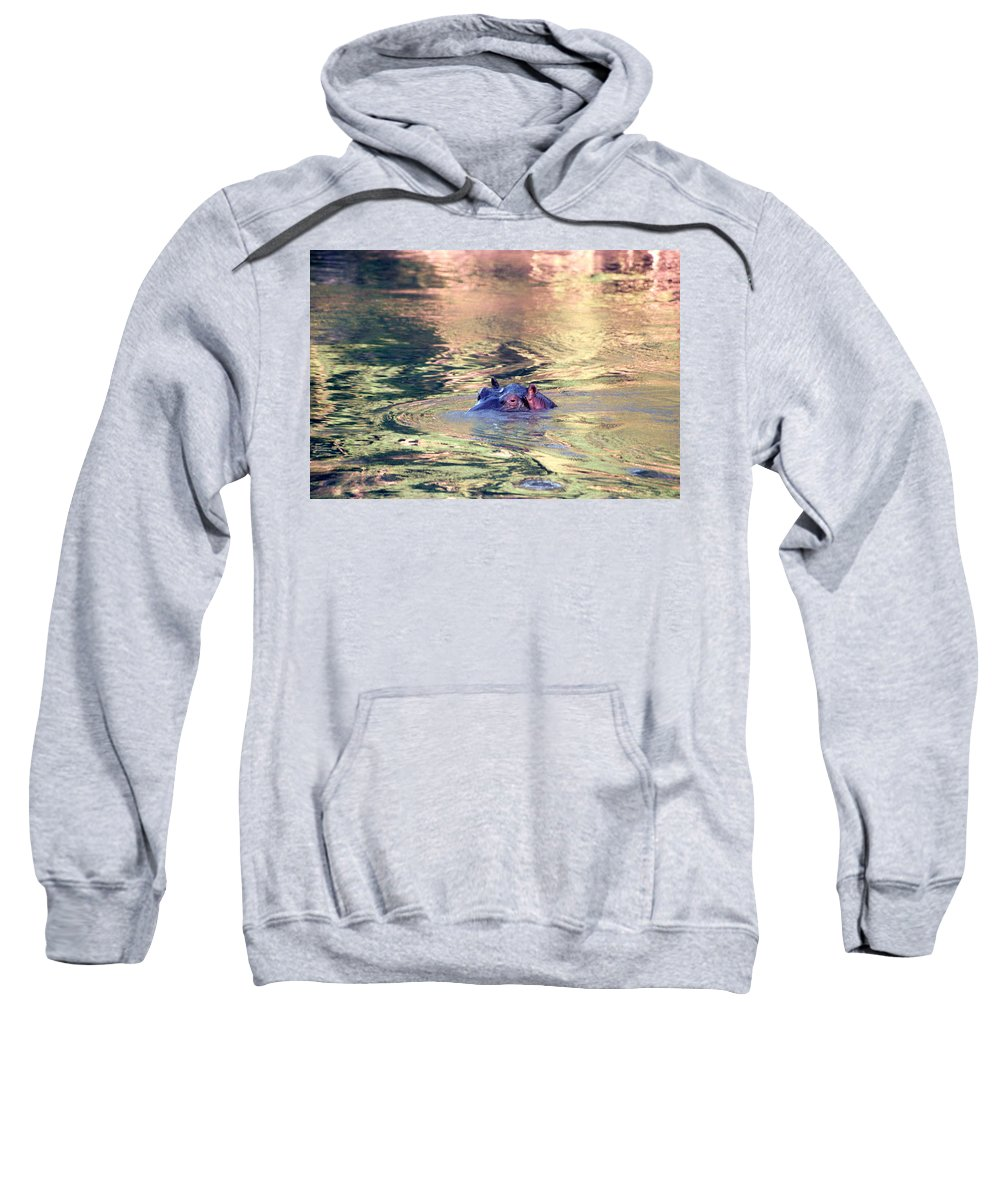 Africa Sweatshirt featuring the photograph Lonely Hippo by Sebastian Musial