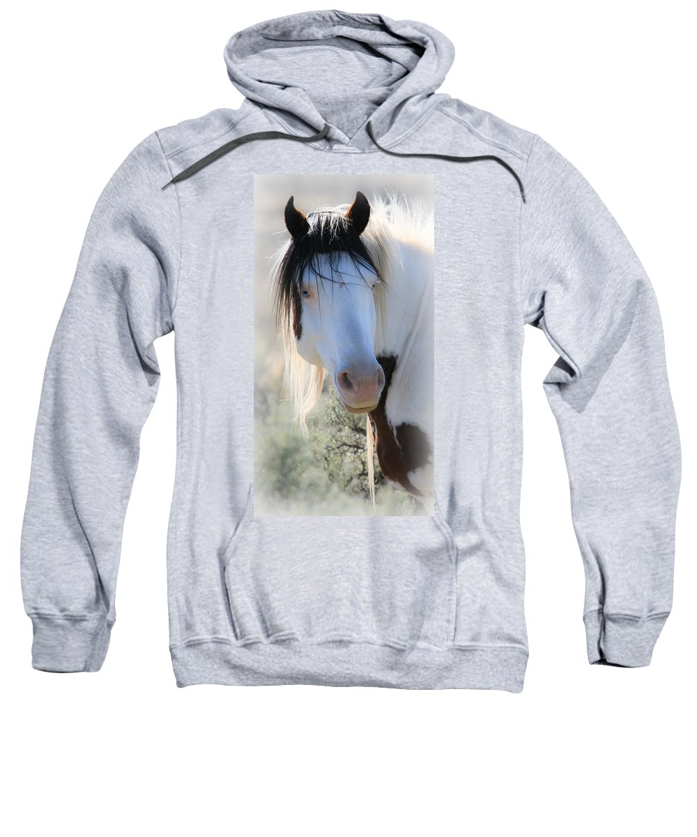 Horses Sweatshirt featuring the photograph Long Hair Strands Of Shaman by Athena Mckinzie
